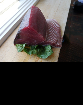 Fresh Tuna from Our Fishmarket